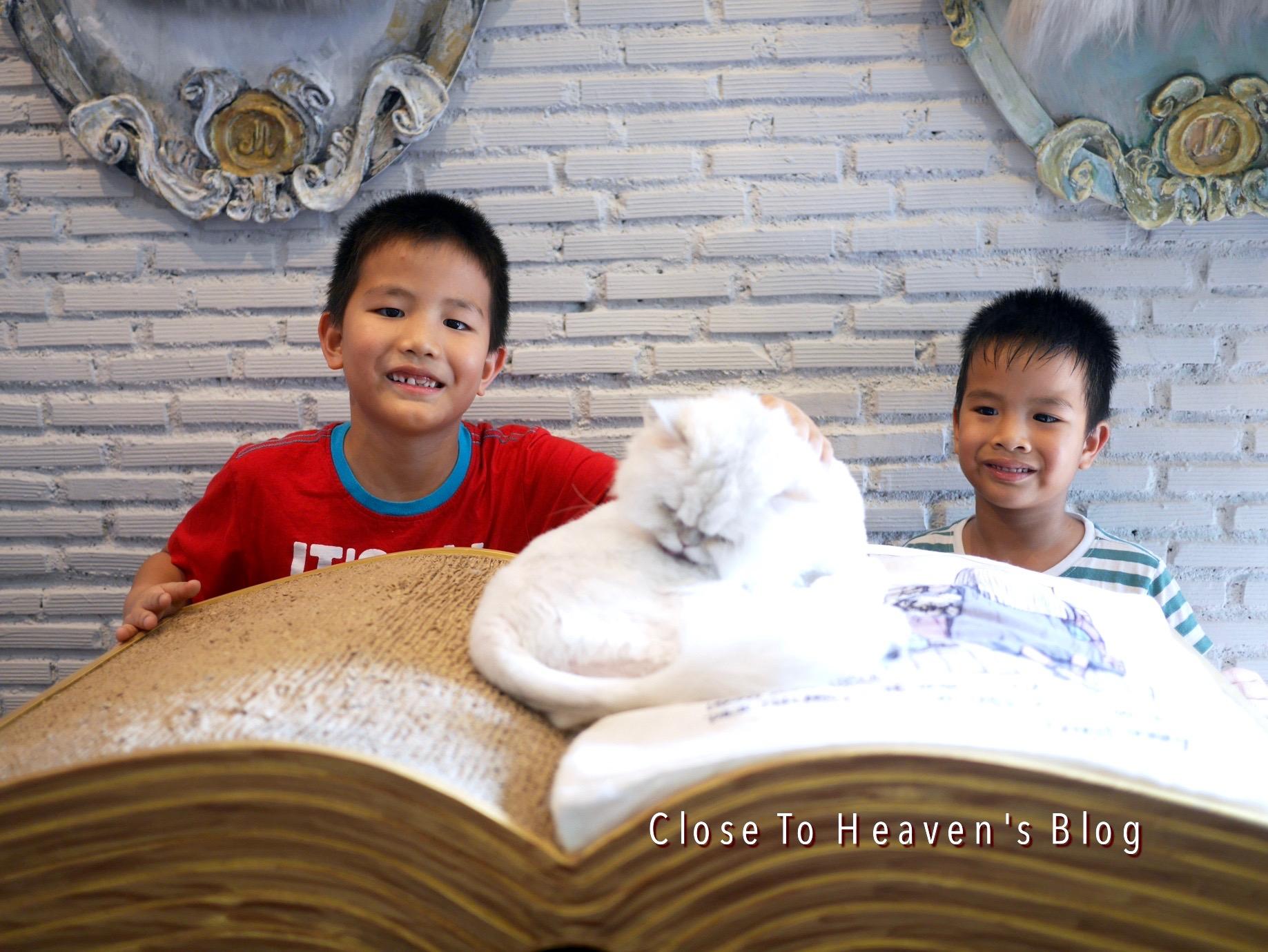 พาลูกเที่ยว คาเฟ่แมว Purr Cat Cafe Club บ้าง